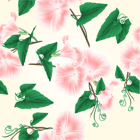 Seamless texture  Morning glory  pink spring flowers set on a white background vintage vector illustration editable hand draw