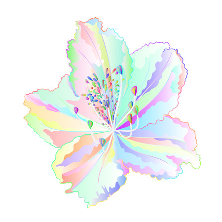 Flower colorful Rhododendron mountain shrub on a white background vintage vector illustration editable hand draw