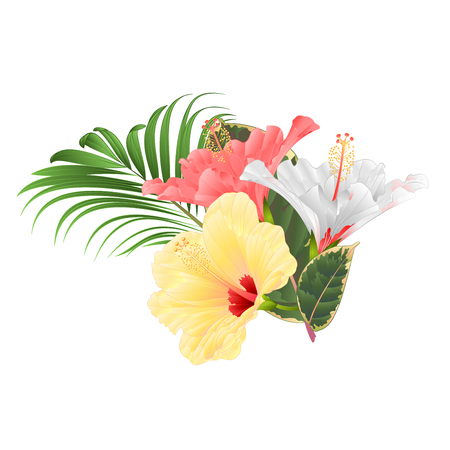 Tropical flowers  floral arrangement, with pink white and yellow hibiscus and  palm ficus  vintage vector illustration  editable hand draw