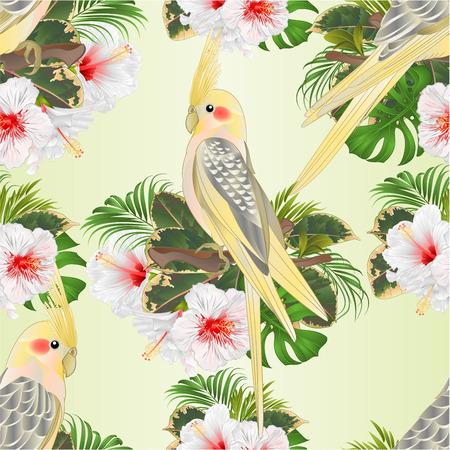Seamless texture Yellow cockatiels cute tropical birds funny parrots and white hibiscus watercolor style on a green background vintage vector illustration editable hand draw
