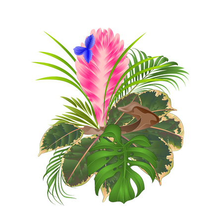 Tillandsia cyanea on a branch bouquet with tropical flowers palm,philodendron on a white background vintage vector illustration editable hand draw