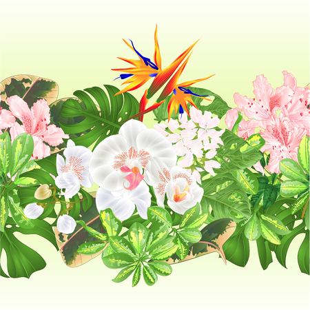 Tropical border seamless background   tropical flowers  floral arrangement with  Strelitzia and white  orchid Phalaenopsis philodendron and Schefflera and Monstera  vintage vector illustration greeting card Illusztráció