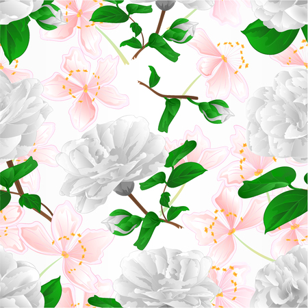 Seamless texture three white flowers Camellia Japonica  with sakura  vintage vector illustration editable  hand draw