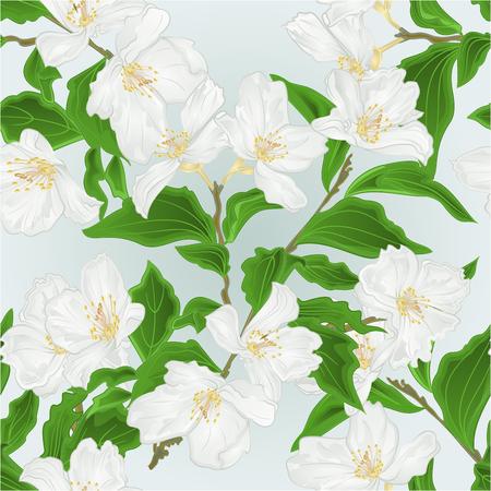 Seamless texture flower Jasmine  branch  blue background vintage vector illustration editable hand draw
