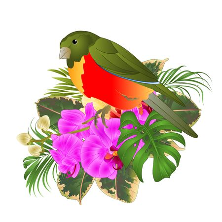 Tropical bird with tropical flowers   floral arrangement, with beautiful hibiscus and orchid,palm,philodendron and ficus vintage vector illustration  editable hand draw