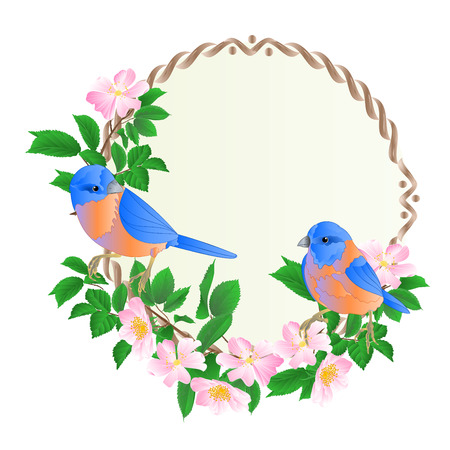 Floral round  frame with wild Roses  and cute small singings birds bluebirds vintage  festive  background vector illustration editable hand draw Illusztráció