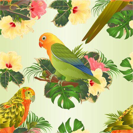 Naadloze textuur vogel Sun papegaaiachtigen papegaai en dwergpapegaaien Agapornis huis huisdieren parkiet op een tak boeket met tropische bloemen hibiscus, palm, philodendron vintage vectorillustratie bewerkbare Vector Illustratie