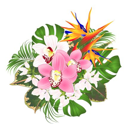 Bouquet with tropical flowers floral arrangement with beautiful Strelitzia and white and pink orchids Cymbidium palm,philodendron and ficus vintage vector illustration editable hand draw Vektorové ilustrace