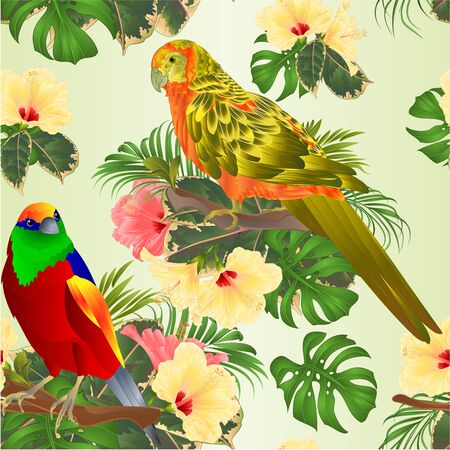 Seamless texture tropical bird and sun Conure Parrot with tropical flowers hibiscus palm,philodendron watercolor background vintage vector illustration editable hand draw