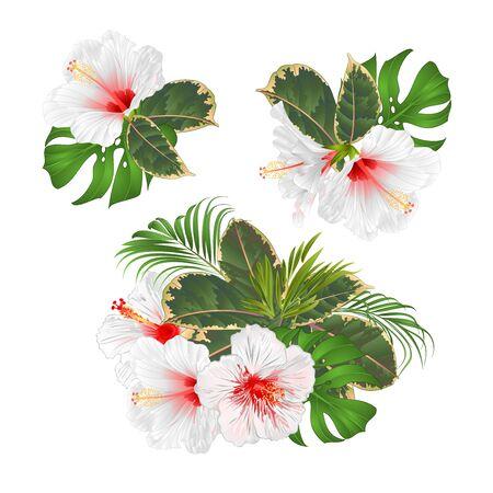Bouquet de fleurs tropicales avec arrangement floral avec beau palmier hibiscus blanc, philodendron et ficus illustration vectorielle vintage tirage à la main modifiable