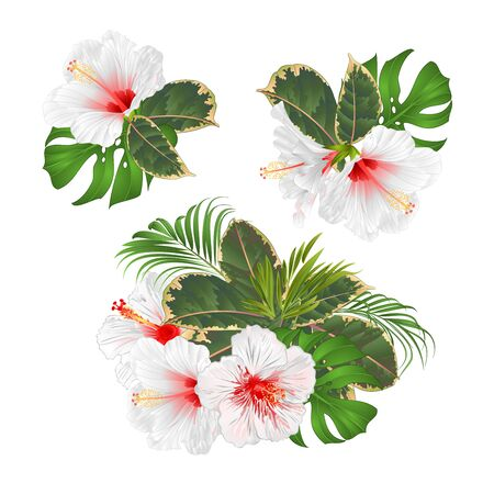 Bouquet with tropical flowers set floral arrangement with beautiful white hibiscus palm,philodendron and ficus vintage vector illustration editable hand draw