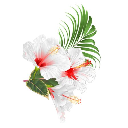 Tropical flowers  floral arrangement, with  white  hibiscus and  palm ficus  vintage vector illustration  editable hand draw