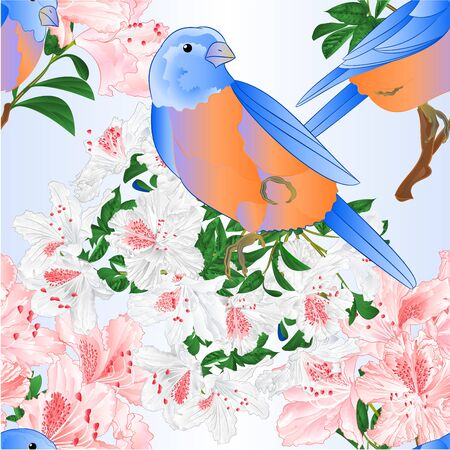 Seamless texture Small  birds Bluebirds  thrush light pink  and white rhododendron branches  vintage vector illustration editable hand draw