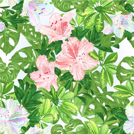 Seamless texture tropical flowers  floral arrangement beautiful pink and multicolored rhododendrons with    Schefflera  and Monstera vintage vector illustration  editable hand draw