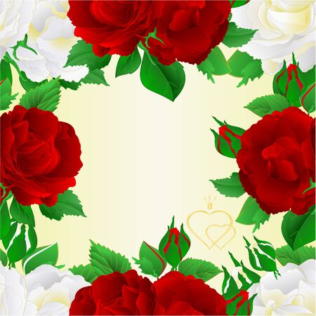 Seamless frame  two white and red roses  festive  background greeting card vintage vector botanical illustration editable hand draw Foto de archivo - 128183834