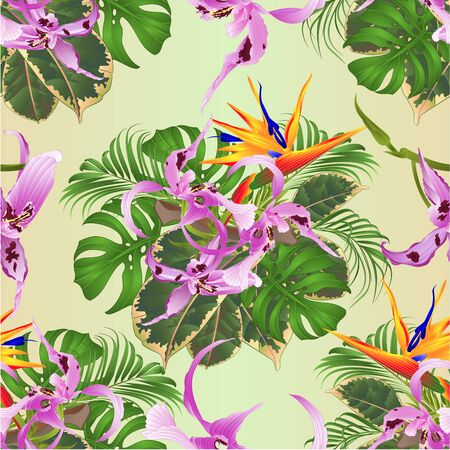 Seamless texture tropical flowers  floral arrangement with beautiful  Orchid Dendrobium  and Strelitzia palm,philodendron and ficus vintage vector illustration  editable hand draw Foto de archivo - 128183836