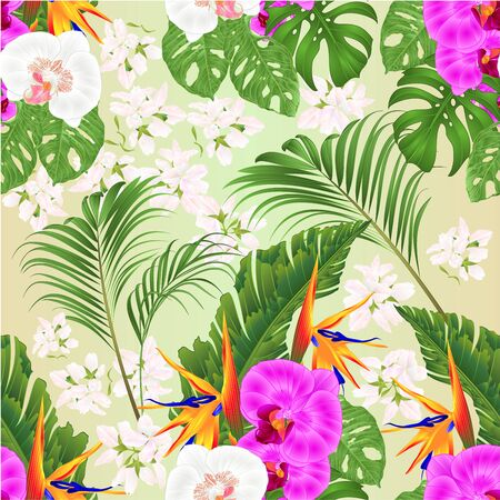Seamless texture Bouquet with tropical flowers   Strelitzia reginae white and purple  orchids Phalaenopsis palm monstera leaf banana  vintage vector illustration editable hand draw