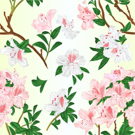 Seamless texture light pink and white rhododendrons  branches mountain shrub vintage vector illustration editable hand draw