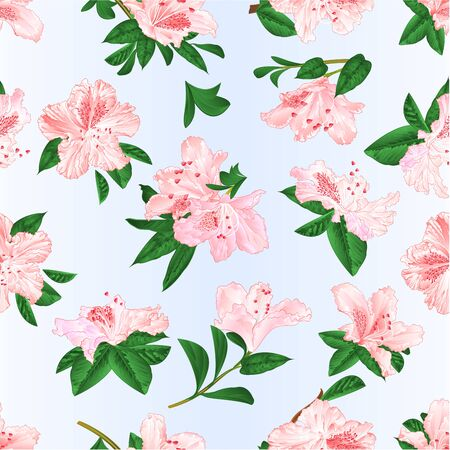 Seamless texture Light pink  flowers rhododendrons and leaves  mountain shrub on a blue background  vintage vector illustration editable hand draw