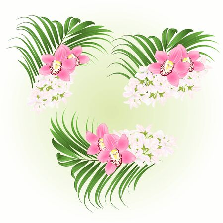 Bouquet with tropical flowers  floral arrangement, with beautiful pink orchids cymbidium and palm vintage vector illustration  editable hand draw Stockfoto - 128184077