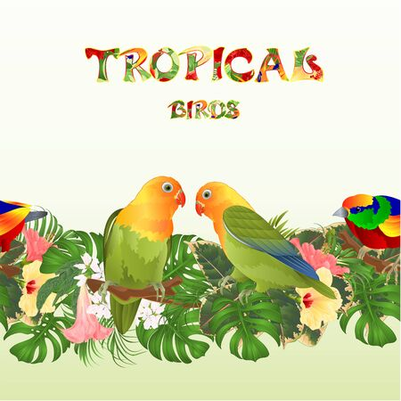 Seamless border Parrots Agapornis lovebird tropical birds standing on a branch and Brugmansia with pink and yellow hibiscus on a white background vector illustration editable hand draw Vector Illustratie