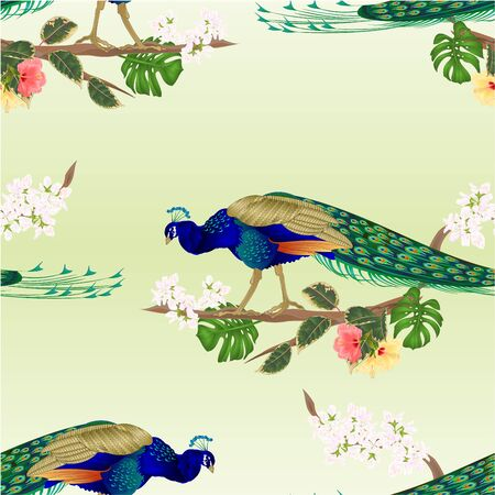 Seamless texture Peacock  tropical bird on branch with  ficus and hibiscus and philodendron watercolor vintage vector illustration editable hand drawn Foto de archivo - 128184104