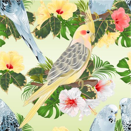 Seamless texture birds corella and Budgerigars blue pets parakeets  on a branch bouquet with tropical flowers hibiscus, palm,philodendron vintage vector illustration editable hand draw