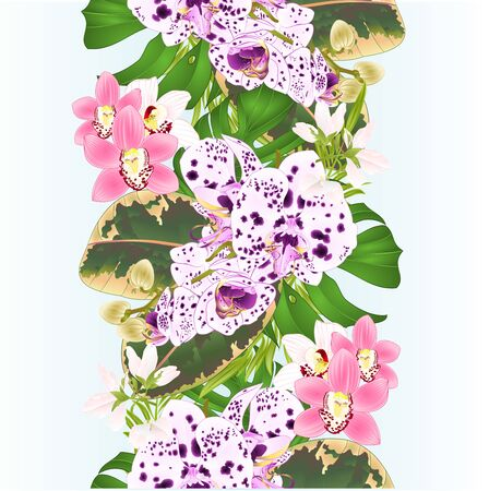 Border seamless  background with tropical flowers  floral arrangement, with beautiful dots orchid Phalaenopsis and cymbidium   palm,philodendron and ficus vintage vector Foto de archivo - 128184396