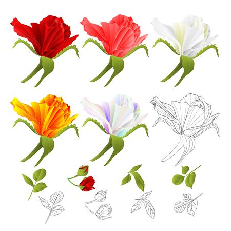 Roses red pink white yellow colored and outline  and leaves vintage  on a white background  vector illustration  hand draw editable Foto de archivo - 128184481