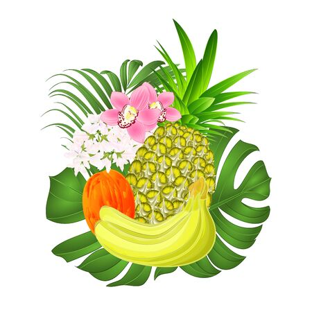 Tropical fruit pineapple and banana  and orchids Cymbidium with  tropical leaves   ficus,palm,philodendron vintage vector illustration editable hand draw Foto de archivo - 128434629
