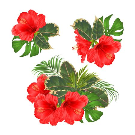 Bouquet with tropical flowers set floral arrangement with beautiful red  hibiscus palm,philodendron and ficus vintage vector illustration  editable hand draw Foto de archivo - 128434633