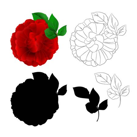 Rose Purple flower and leaves natural and silhouette  and outline vector Stock Illustratie