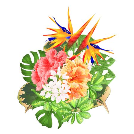 Bouquet with tropical flowers  floral arrangement with  Strelitzia and pink and yellow hibiscus philodendron and Schefflera and Monstera  vintage vector illustration  editable hand draw Foto de archivo - 128434644