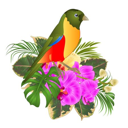 Small tropical bird with tropical flowers   floral arrangement, with beautiful orchid and hibiscus,palm,philodendron and ficus vintage vector illustration  editable hand draw