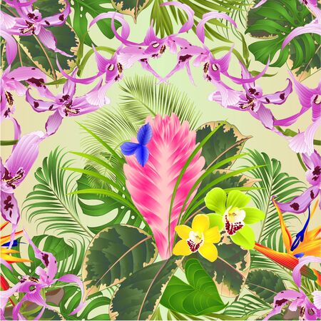 Seamless texture tropical flowers  floral arrangement with beautiful  Orchids Dendrobium tillandsia cyanea  cymbidium and Strelitzia palm,philodendron and ficus vintage vector illustration  editable hand draw