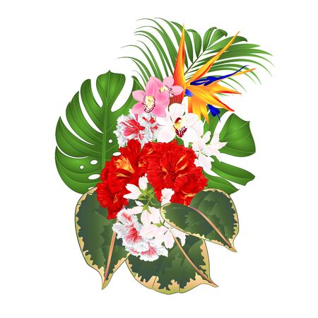 Bouquet with tropical flowers  floral arrangement with beautiful Strelitzia  and white and red hibiscus and orchids Cymbidium  palm,philodendron  ficus vintage vector illustration  editable hand draw
