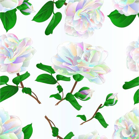Seamless texture multicolored  flower Camellia Japonica  with buds  on a blue  background vintage vector illustration editable  hand draw Stock Illustratie