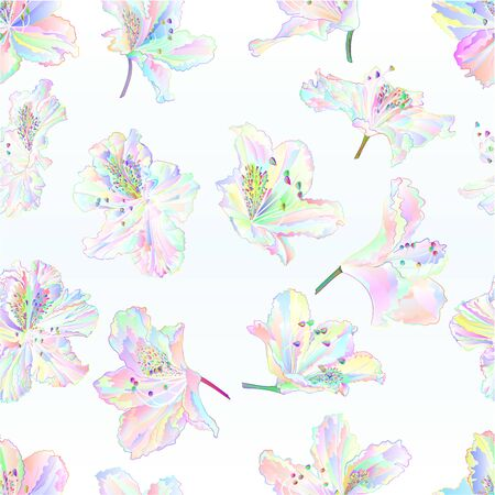 Seamless texture multi colored  flowers rhododendrons   mountain shrub on a blue  background  vintage vector illustration editable hand draw Stock Illustratie