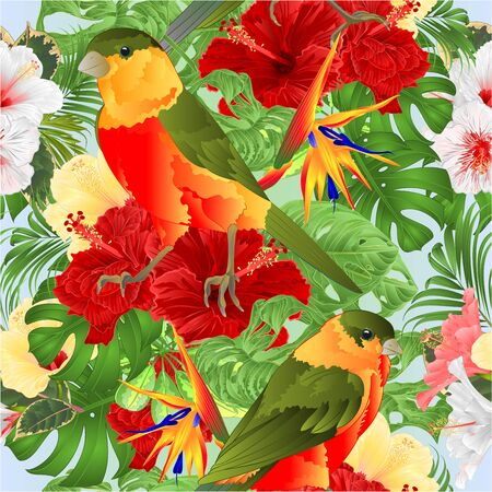 Seamless texture tropical birds cute small funny and various hibiscus and Strelitzia reginae monstera palm watercolor style vintage vector illustration hand draw editable