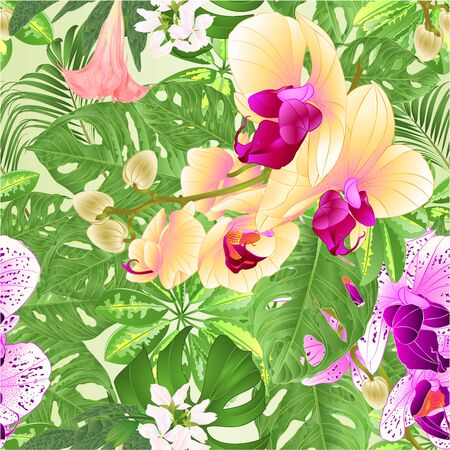 Seamless texture  tropical flowers  floral arrangement beautiful and yellow  orchids Phalaenopsis  purple and white with    Schefflera  and Monstera vintage vector illustration  editable hand draw