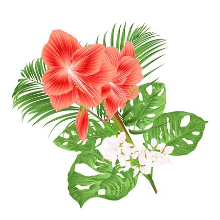 Beautiful Amaryllis red  tropical flower and  monstera and palm on white background vintage vector illustration editable hand draw Ilustração