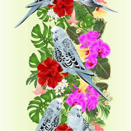 Tropical border seamless background Budgerigars, blue pets parakeets  on a bouquet with tropical flowers hibiscus,orchid  palm,philodendron  and   Brugmansia nature  background vintage vector illustration editable hand draw