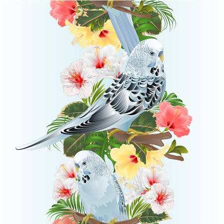 Vertical border seamless background bird Budgerigar, home pet ,blue pet parakeet  on a branch bouquet with tropical flowers hibiscus, palm,philodendron vintage vector illustration editable hand draw