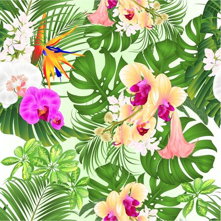 Seamless texture tropical flowers with Brugmansia Strelitzia reginae yellow white and purple orchid Phalaenopsis palm monstera leaf banana vintage vector illustration editable hand draw