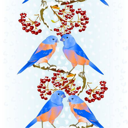 Vertical border seamless background birds Bluebirds  thrush small songbirdon on  snowy tree and berry winter background vintage vector illustration editable hand draw