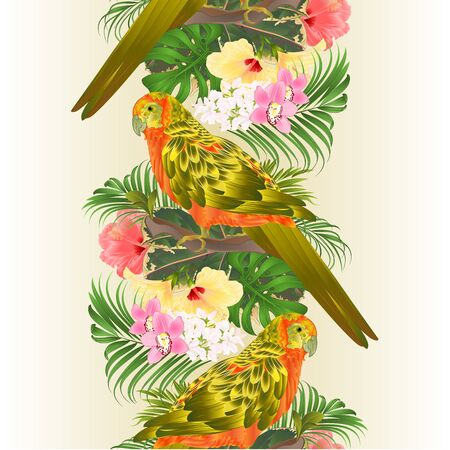 Seamless border Bird Sun Conure Parrot , home pet , parakeet  on a branch bouquet with tropical flowers hibiscus, palm,philodendron vintage vector illustration editable hand draw