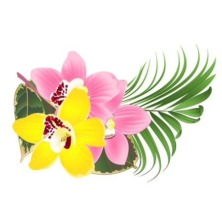Tropical flowers  floral arrangement, with Orchid cymbidium pink and yellow  palm ficus  on a white background vintage vector editable hand draw