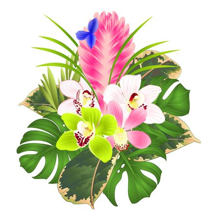 Tillandsia cyanea and orchids cymbidium various bouquet with tropical flowers palm,philodendron on a white background vintage vector illustration editable hand draw Ilustração Vetorial