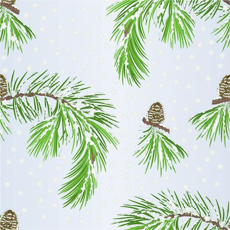 Seamless texture branch pine tree and pine cone with snow vintage vector illustration editable hand draw