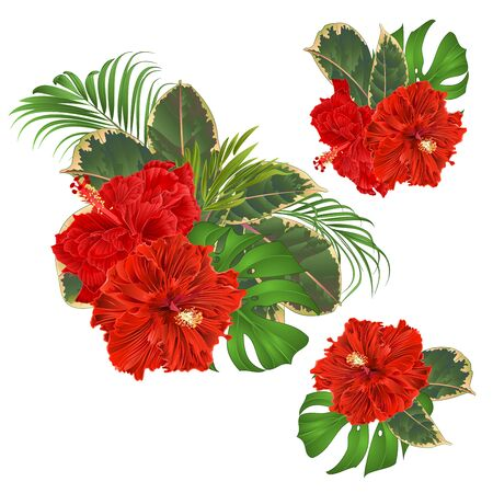 Bouquet with tropical flowers set floral arrangement with beautiful red hibiscus corrugated palm,philodendron and ficus vintage vector illustration  editable hand draw